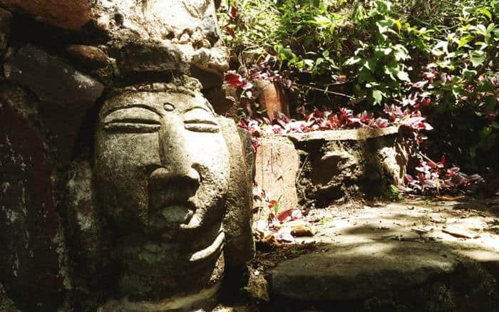 FungiAcademy-MayanGardens